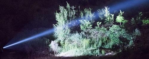 linternas para caza